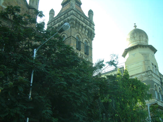 Looking up above trees to towers in English and Indian styles